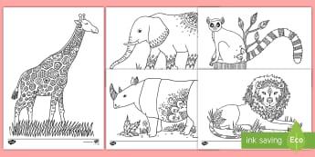 动物园主题涂色练习 - 动物主题,野生动物,涂色练习,长颈鹿,斑马,犀牛,大象