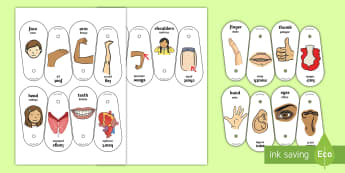 Parts Of The Body Communication Fans English/Portuguese - parts of the body, communication, communicate, discussion, arm, back, tummy, hands, my head hurts, f