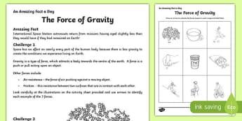 The Force of Gravity Worksheet / Activity Sheet, worksheet