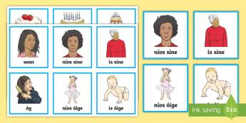 Comparative Adjectives (Céimeanna Comparáide na nAdiachta) Matching Cards Gaeilge - Gramadach na Gaeilge, grammar, adjectives, adiachtaí, comparative, Céimeanna Comparáide na nAdiac