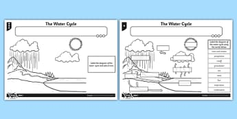 The Water Cycle Worksheet / Activity Sheet - water cycle, activity, sheet, worksheet