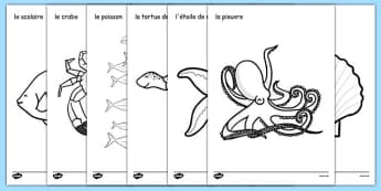 Under the Sea Colouring Posters French - french, france, francais, under the sea, colouring, colering