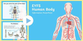 EYFS Human Body Information PowerPoint