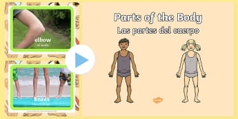 * NEW * Parts of the Body PowerPoint - English / Spanish  - EAL, Parts of the Body PowerPoint - parts, body, powerpoint, human, pp, ppt,Spanish-translation