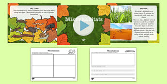 Living Things and their Habitats Microhabitats Lesson Flipchart