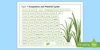 Edexcel Biology Ecosystems and Material Cycles Word Mat - Word Mat, edexcel, gcse, nitrogen cycle, material cycle, carbon cycle, water cycle, atmosphere, ecos