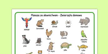 Plansza ze słownictwem Zwierzęta domowe po polsku - kot, pies