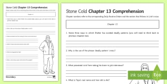 'Stone Cold' Chapter 13 Comprehension Activity Sheet - Swindells, Comprehension, Shelter, Link, Assess