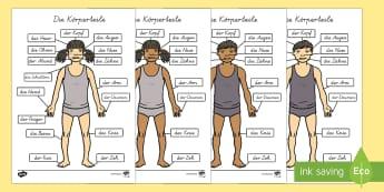 Körperteile A4 Deutsch - Körper, Wachsen, Körperteile, Körperteile Beschreibung
