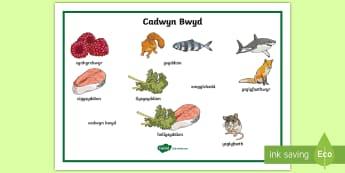 Mat Geiriau Cadwyn Bwyd Gyda Lluniau - word, mat, food, chain, science, mat, geiriau, cadwyn, cadwyni, bwyd, gwyddoniaeth,Welsh