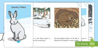 Animals in Winter Guided Reader -  Seasons, Seasonal Changes, hibernation, snow, animals, changes,