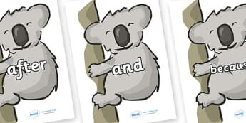 Connectives on Koalas - Connectives, VCOP, connective resources, connectives display words, connective displays