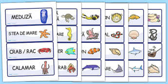 Viața marină - Cartonașe cu imagini și cuvinte - viața marină, cartonașe, imagini, cuvinte, vocabular, animale, pești, mare, apă, materiale, materiale didactice, română, romana, material, material didactic