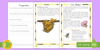 Comprensión lectora de atención a la diversidad: Las abejas - lectura, leer, lee, escritura, escribir, abejas, insectos, bichos, comprensión, lector,