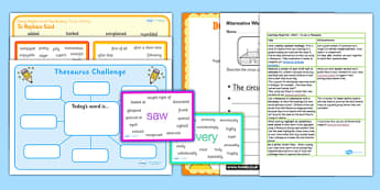 Use a Thesaurus Teaching Ideas and Resource Pack - word meanings