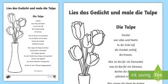 Die Tulpe - ein Gedicht Arbeitsblatt: Lesen und Malen - Gedicht, Tulpe, Blume, poem, tulip, flower,German