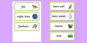 Owl Word Cards - owl, word, cards, word cards, owls, story