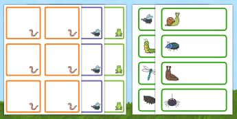 Minibeast Editable Drawer and Peg Labels Resource Pack - new class, coats, cloakroom, tray labels, name labels,