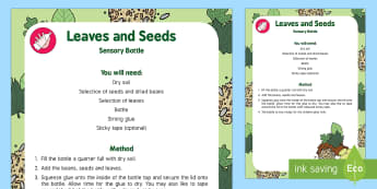 Leaves and Seeds Sensory Bottle - Plants and Growth, discovery bottle, leaves, plants, beans, soil, play, explore, growing, seeds