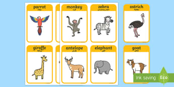 Animal Flash Cards to Support Teaching on Handa's Surprise English/Arabic - african surprise, animal, flash cards,handas surpirse, flashards, flascards, Arabic, translation