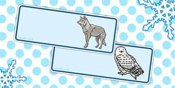 Polar Animals Drawer Peg Name Labels - polar, name labels, drawer