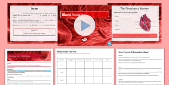 AQA Biology Unit 4.2 Blood Vessels Cover Lesson Pack - blood vessel, vein, artery, capillaries, valves, oxygenated, de-oxygenated