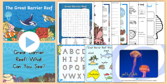 Great Barrier Reef Junior Primary Resource Pack - Australian landmark, australia, australian geography, reading, comprehension, guided reading,Austral