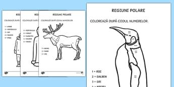 Regiuni Polare - Colorează după codul numerelor - animale de la poli, română, materiale, arctic, animale polare, poli, polar, numerație, culori,Rom