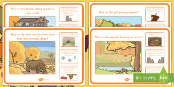 Fall Why and Because Scene and Question Cards - Fall, autumn, Scene and Question, Animal adaptations, adaptations, Why and Because, Seasons, Seasona