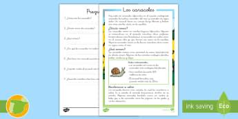 Comprensión lectora de atención a la diversidad: Los caracoles - caracoles, bichos, insectos, naturaleza, ciencias, leer, lectura, comprensión, lector, escritura, e