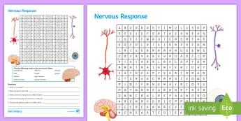 KS4 Nervous Response Word Search - stimulus, synapse, effector, sensory neurone, reflex