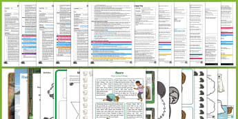 EYFS Bears Adult Input Planning and Resource Pack - Early Years Plannng, topic plan, Panda bear, polar bear, brown bear, black bear, grizzly bear, UtW,