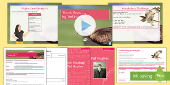 GCSE Poetry Lesson Pack to Support Teaching On 'Hawk Roosting' by Ted Hughes - Hughes, Hawk, Roosting, KS4, Literature, Poetry, EDUQAS,