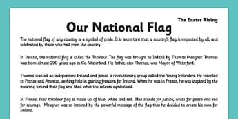 Irish History 1916 Rising Our National Flag Comprehension Activity Sheet - irish history, 1916 rising, easter rising, comprehension, ireland, tricolour, national flag, worksheet