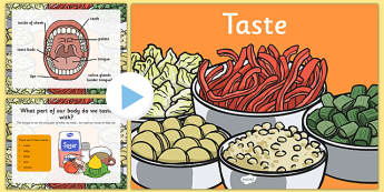 Science Senses 5 Tastes PowerPoint - science, senses, tastes, powerpoint