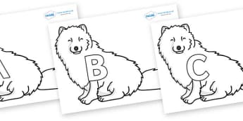 A-Z Alphabet on Arctic Foxes - A-Z, A4, display, Alphabet frieze, Display letters, Letter posters, A-Z letters, Alphabet flashcards