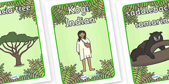Rainforest Display Posters - rainforest, jungle, geography, forest, trees, snake, tiger, monkey, river, plants, green, display, poster, sign, amazon, insects, animals, acacia tree, tree fern, exotic, sloth, tapir
