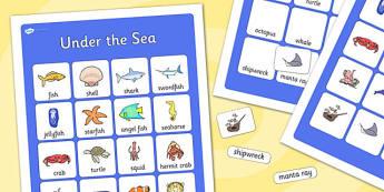 Under the Sea Vocabulary Poster - ESL Ocean Vocabulary