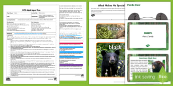 EYFS Brilliant Bears Adult Input Plan and Resource Pack - Bears, Animals, PSED, personal, social, emotional, self confidence, self awareness, skills, talents,