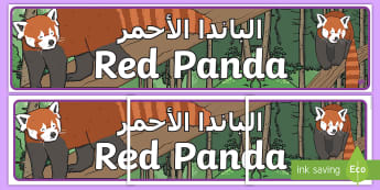 Red Panda Display Banner Arabic - Arabic/English  - Themed banner, banner, display banner, Classroom labels, Area labels, Poster, Display, EAL, Arabic.,