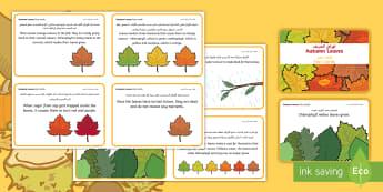 Autumn Leaf Fact Cards Arabic - Arabic/English -  - chlorophyll, sunlight, water, seasons, fall, EAL, Arabic.,Arabic-translation