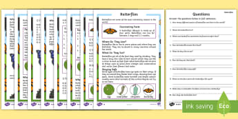 Butterfly Reading Comprehension Activity Pack English/Mandarin Chinese - butterfly, reading, comprehension, EAL