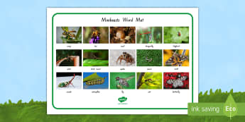 New Zealand Minibeasts Photo Word Mat - New Zealand, minibeasts, insects, bugs, minibeast, year 1, year 2, year 3, science, nature, living w