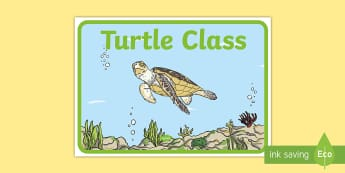 Turtle Class Display Posters - turtle, class, display, poster, sign, turtels, class labels, different, animal, animals
