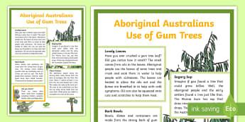Aboriginal Australians Use of Gum Trees Display Poster - ACSSU031, ACSSU018, ACSSU074, ACSHE051, eucalypt, eucalyptus, gumtree, indigenous Australians, abori