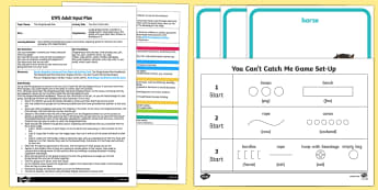 EYFS You Can't Catch Me Adult Input Plan and Resource Pack - The Gingerbread Man, Traditional Tales, pe, pd, games, jumping, balancing, chasing, running, avoidin