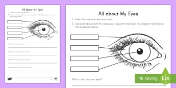 All About My Eyes Science Activity - all about me, my eyes, eye color, genetics, getting to know me, research project, science project