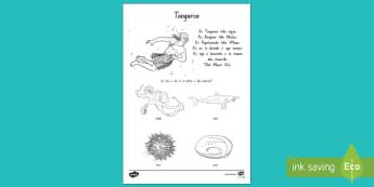 Tangaroa me āna Tamariki Worksheet / Activity Sheet Te Reo Māori - Tangaroa, tawhirimatea, tanemahuta, tumatauenga, rongomatane, haumietiketike, ruaumoko, domains, wao