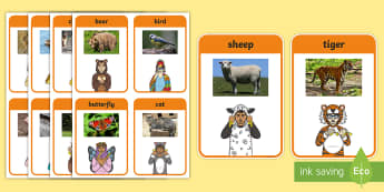 British Sign Language (BSL) Animals Photo Flashcards - sorting cards, activities, memory, bear, bird, butterfly cat, chicken, cow, deer, duck, dog, elephan