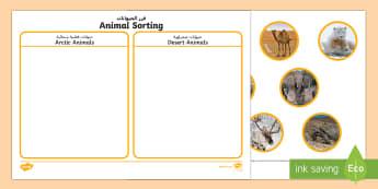 Animal Sorting Activity Arabic/English  - The Arctic, Polar Regions, north pole, south pole, explorers, orca, whale, penguin, polar bear, anta